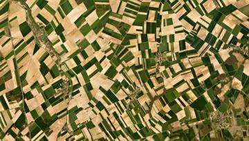 FAO assists Iran in improving agriculture monitoring systems via satellite imagery