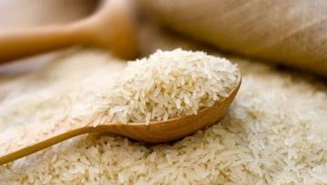 Some 2,000 tons of rice exported in a year: SCI