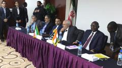 Iranian entrepreneur lauds African capacities for cooperation