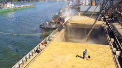 Iran's exported wheat arrives in Italian Bari Port