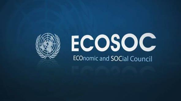 Iranian private association joins UN's ECOSOC