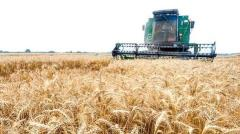 USDA Forecasts Growth in Iranian Wheat Output
