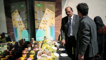 : FAO envoy Iran 3rd largest honey producer
